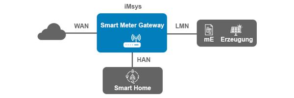EWERK-Blog-Ueberblick-Smart-Meter-Rollout-Chance-Herausforderung-Netzbetreiber-intext-1